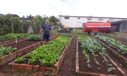 Horta municipal já abastece escolas de Jacinto Machado