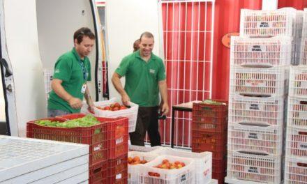 Ceasa doa 700 toneladas de alimentos para instituições de caridade