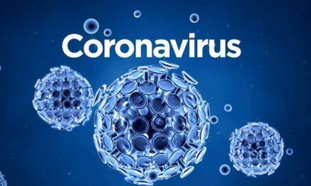 Coronavírus em SC: Estado confirma 15.015 casos e 216 mortes por Covid-19