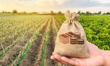 Governo anuncia medidas econômicas para ajudar produtores rurais