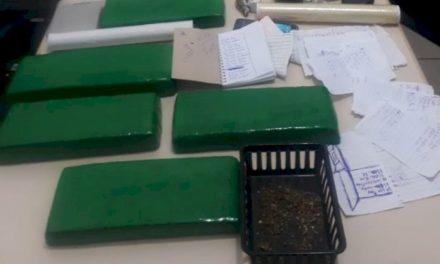 Polícia Militar apreende mais de 5 quilos de maconha no Sul de SC