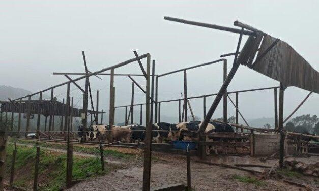Programa oferece subsídios para agricultores atingidos por ciclone