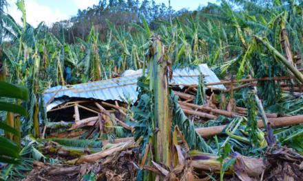 Ventos fortes deixam rastro de destruição em Jacinto Machado