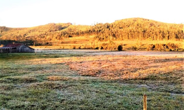 Frio intenso e geada marcam a manhã mais fria do ano na região