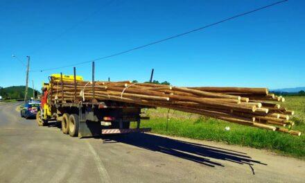 PRF flagra caminhão com seis metros de carga para fora da carroceria na BR 101