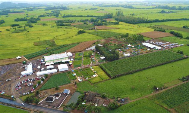 17ª edição do Campo Agroacelerador da Cooperja será realizado de forma digital