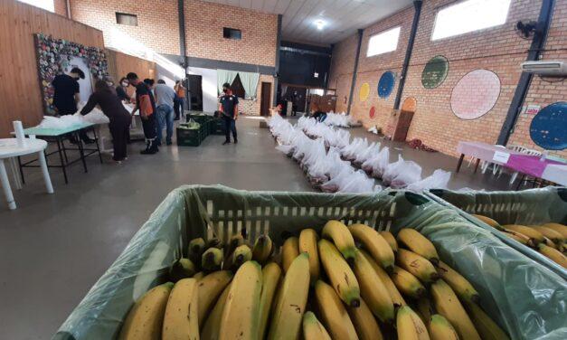 Içara entrega 240 cestas de alimentos por meio do projeto Cesta Verde