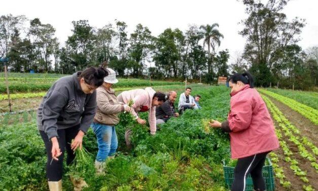 Cocal do Sul promove oficina sobre Agricultura Familiar