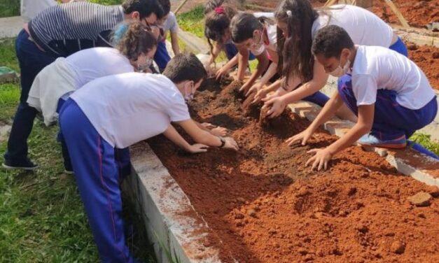 Atividades ambientais contemplam mais de 1,3 mil alunos em Criciúma