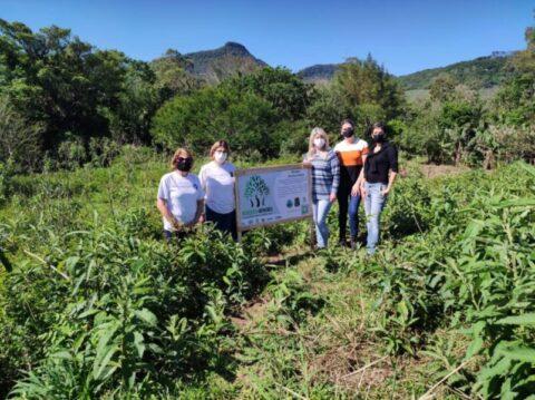 Projeto na região de Torres planta árvores em homenagem às vítimas da covid-19